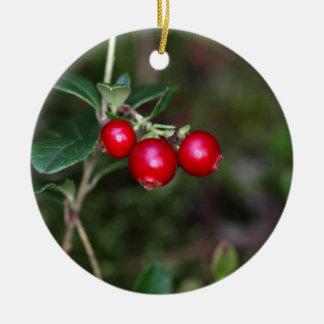 Beeren eines wilden Lingonberry (Vaccinium Rundes Keramik Ornament