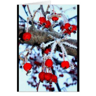 Beeren-Weihnachten! Karte