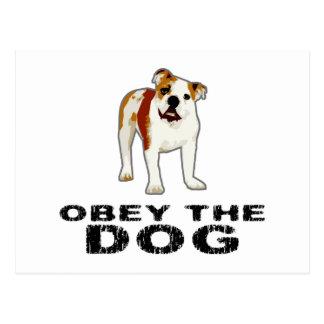 Befolgen Sie den Hund Postkarte