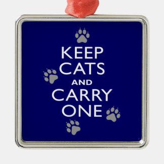 Behalten Sie Katzen Quadratisches Silberfarbenes Ornament