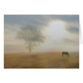 Beileids-Karte für Pferdeinhaber Grußkarte