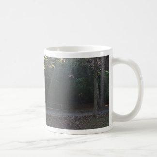 Belichtete Bank Kaffeetasse
