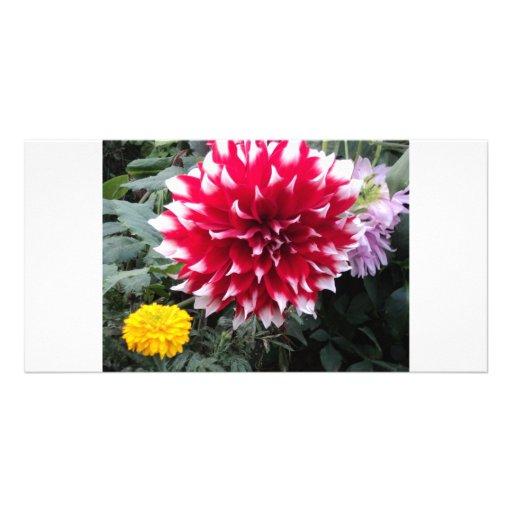 Belle fleur cartes de vœux avec photo