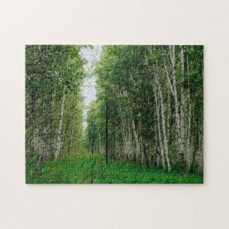 Belle forêt d'arbre de bouleau puzzles