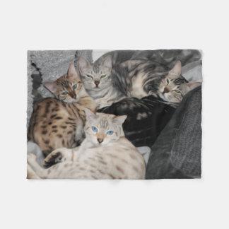 Bengalischer Katzekitty-Stapel Fleecedecke