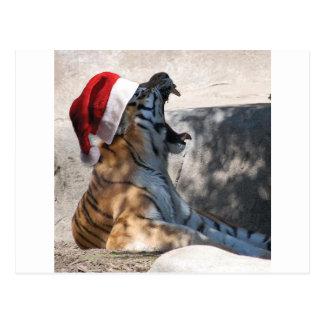 Bengalischer Tiger mit einer Weihnachtsmannmütze Postkarte