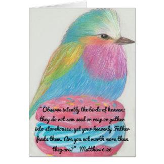 Beobachten Sie Vögel von Heaven~Scripture Karte