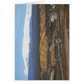 Berg Wrangell Karte