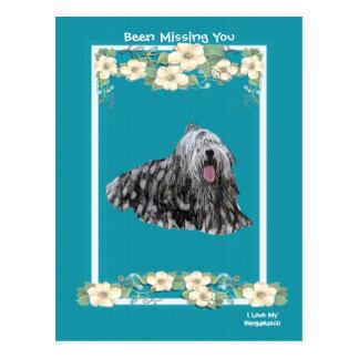 Bergamasco auf Türkis-mit Blumenvermisstem Sie Postkarte