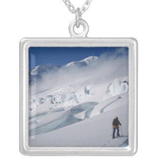 Bergsteiger auf dem Tasman Gletscher im Berg Versilberte Kette