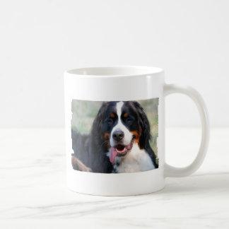 Bernese Gebirgshund mit der großen Kaffeetasse