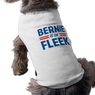 Bernie ist auf Fleek Top