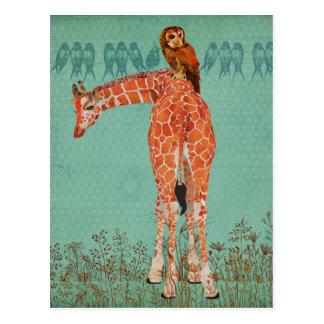 Bernsteinfarbige Giraffen-u. Eulen-Federn Postkarte