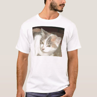 Bessert das Kätzchen aus T-Shirt