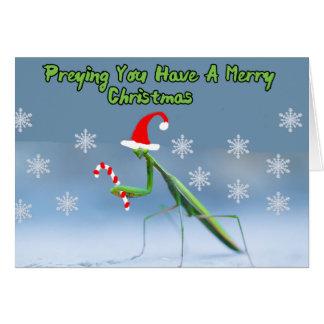 Betender Mantis-Weihnachtskarte mit Karte