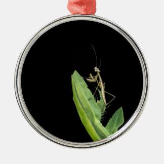 Betender Mantis-Weihnachtsverzierung Silbernes Ornament