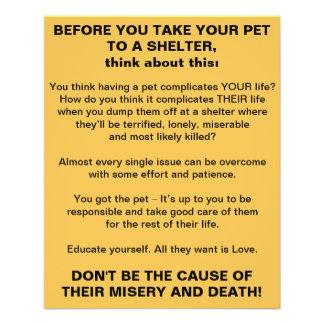 Bevor Sie Ihr Haustier zu einem Schutz-Flyer 11,4 X 14,2 Cm Flyer