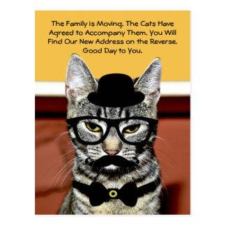 Bewegung Herr-Cat Announces Upcoming Family Postkarte