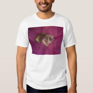 Bezauberndes Kätzchen Tshirts