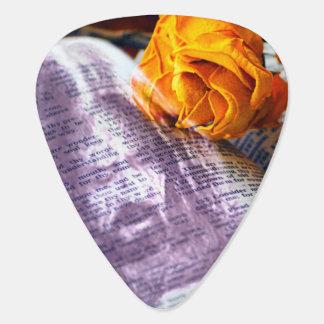 Bibel-Gelb-Rose Jesuss Christus Plektron