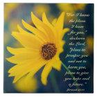 Bibel-Vers-Jeremias-29:11, gelbe Wildblume Fliese