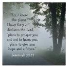 Bibel-Vers-Jeremias-29:11 Keramik-Fliese Keramikfliese