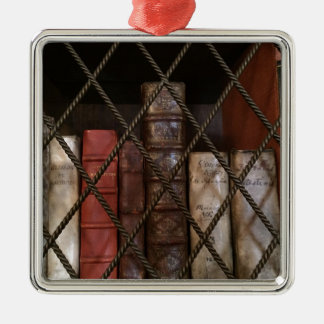 Bibliotheks-Bücherregal Silbernes Ornament