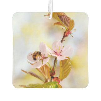 Biene auf einer KirschBlume Lufterfrischer