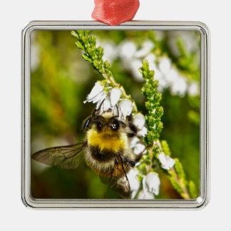 Biene auf glücklicher weißer Heide Silbernes Ornament