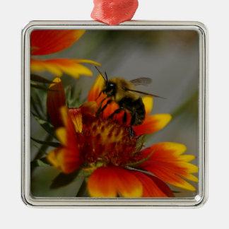 Biene, die auf einer Blume herumsucht Quadratisches Silberfarbenes Ornament