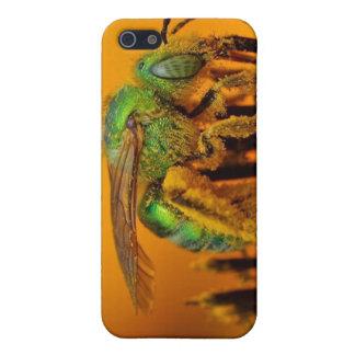 Biene, die Bonbon 1 erhält iPhone 5 Schutzhüllen