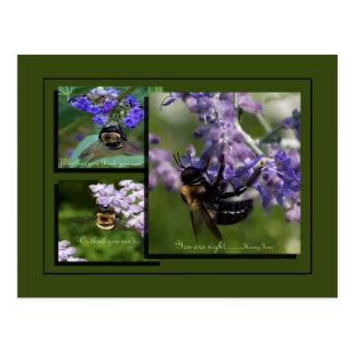 Bienen auf Blüten Postkarte