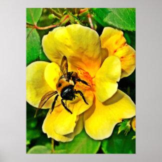 Bienen-Herausforderung Poster