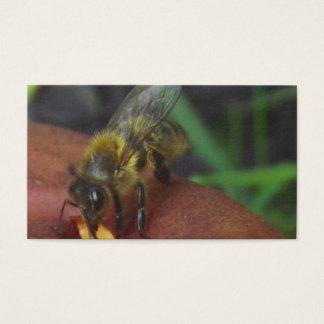 Bienen   sucht Karte auf