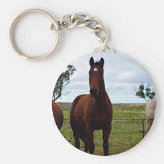 Big_Dark_Brown_Horse, _ Schlüsselanhänger