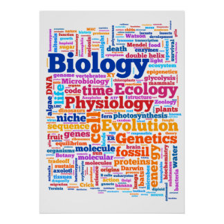 Biologie Wordle Nr. 7 Poster
