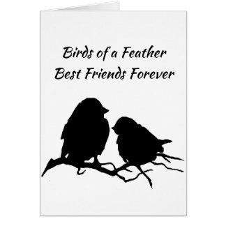 Birds- of a Featherbeste Freunde für immer Karte