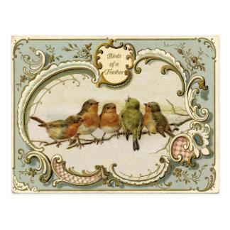 Birds- of a FeatherVintage Wiedergabe-Postkarte Postkarte