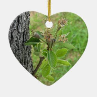 Birnenbaumzweig mit den Knospen im Frühjahr Keramik Herz-Ornament