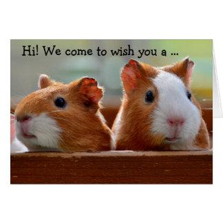 Birthday Card: Two Guinea Pigs Karte
