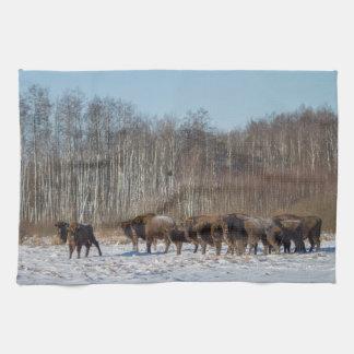 Bison-Herde Handtuch