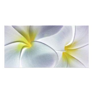 Blanc customisé par fleur d'Hawaï de Frangipani de Modèle Pour Photocarte