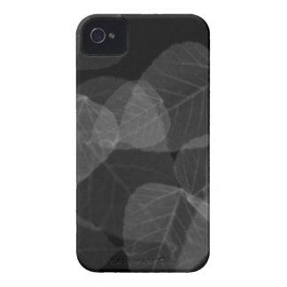 Blatt-Röntgenstrahl Case-Mate iPhone 4 Hüllen