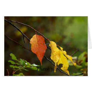 Blätter im Fall Karte