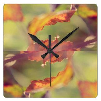 Blätter im Wind Quadratische Wanduhr