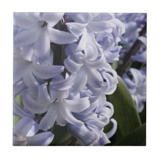 Blaue Hyazinthe Fliese oder Trivet