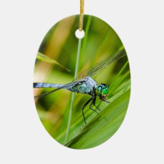 Blaue Libelle auf einem Blatt Ovales Keramik Ornament