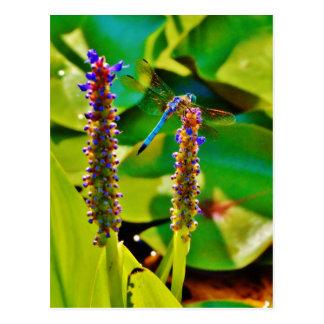 Blaue Libelle und Blumen Postkarte
