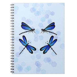 blaue Libellen Spiralblöcke