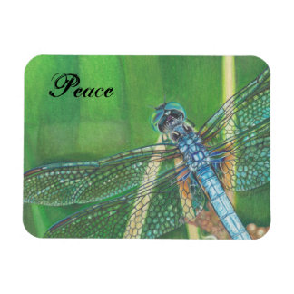 Blaue Libellenfarbbleistiftkunst auf Magneten Magnet